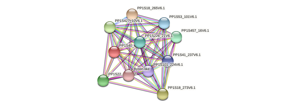 PP1S40_67V6.1 protein (Physcomitrella patens) - STRING interaction network