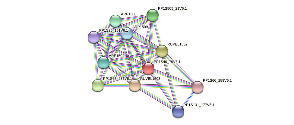 PP1S40_79V6.1 protein (Physcomitrella patens) - STRING interaction network