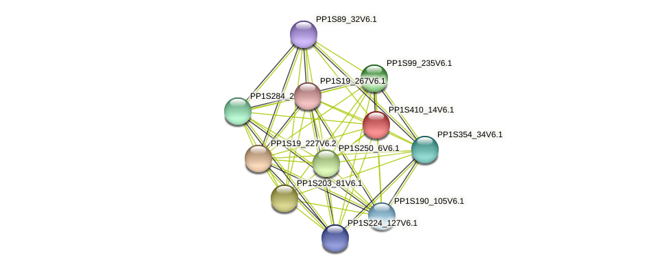 PP1S410_14V6.1 protein (Physcomitrella patens) - STRING interaction network