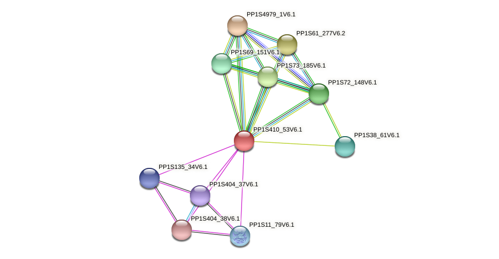 PP1S410_53V6.1 protein (Physcomitrella patens) - STRING interaction network
