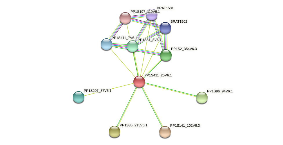 PP1S411_25V6.1 protein (Physcomitrella patens) - STRING interaction network