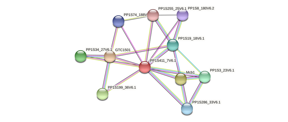 PP1S411_7V6.1 protein (Physcomitrella patens) - STRING interaction network