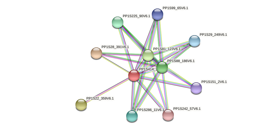 PP1S414_18V6.1 protein (Physcomitrella patens) - STRING interaction network