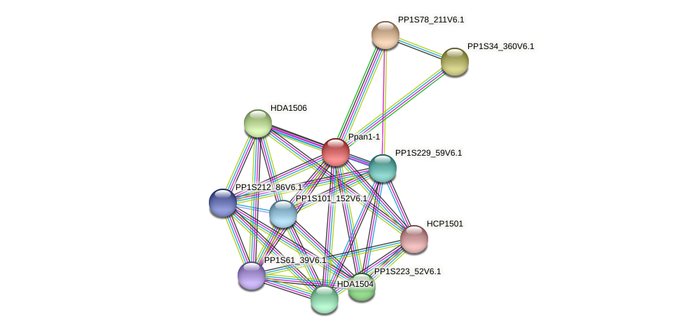 PP1S416_11V6.1 protein (Physcomitrella patens) - STRING interaction network