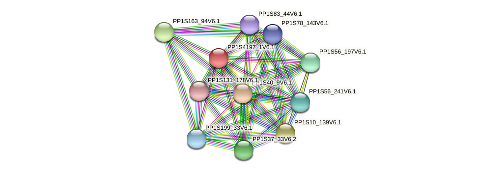 PP1S4197_1V6.1 protein (Physcomitrella patens) - STRING interaction network