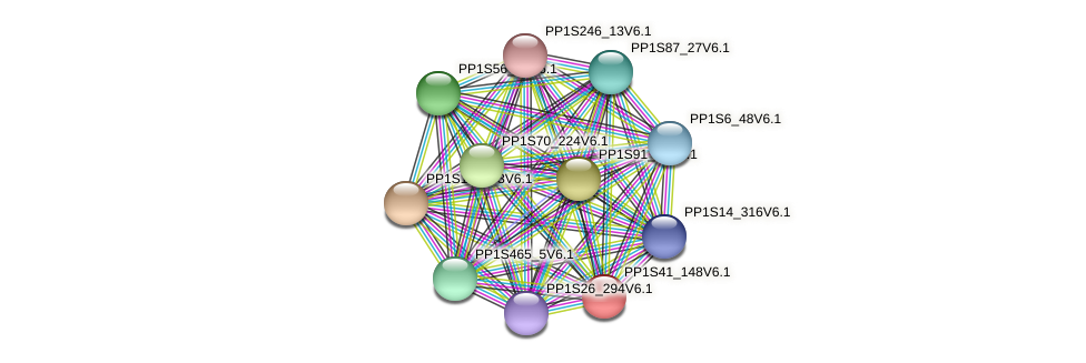 PP1S41_148V6.1 protein (Physcomitrella patens) - STRING interaction network