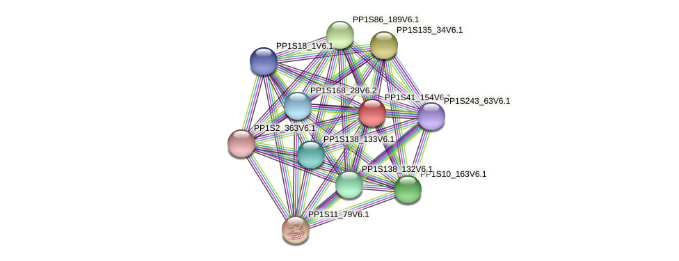 PP1S41_154V6.1 protein (Physcomitrella patens) - STRING interaction network