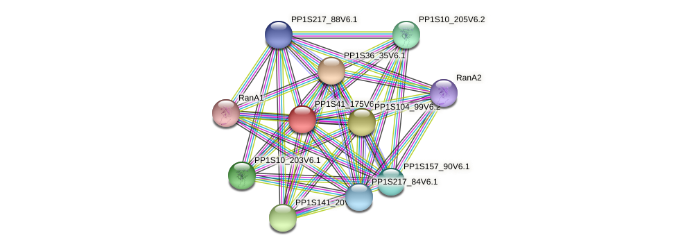 PP1S41_175V6.1 protein (Physcomitrella patens) - STRING interaction network