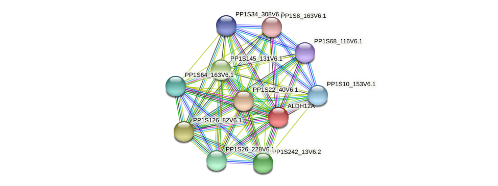 ALDH12A protein (Physcomitrella patens) - STRING interaction network