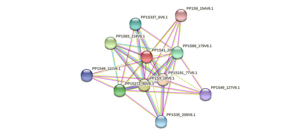 PP1S41_200V6.1 protein (Physcomitrella patens) - STRING interaction network