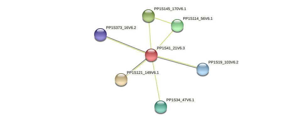 PP1S41_21V6.1 protein (Physcomitrella patens) - STRING interaction network