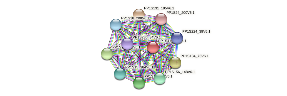 PP1S41_263V6.1 protein (Physcomitrella patens) - STRING interaction network