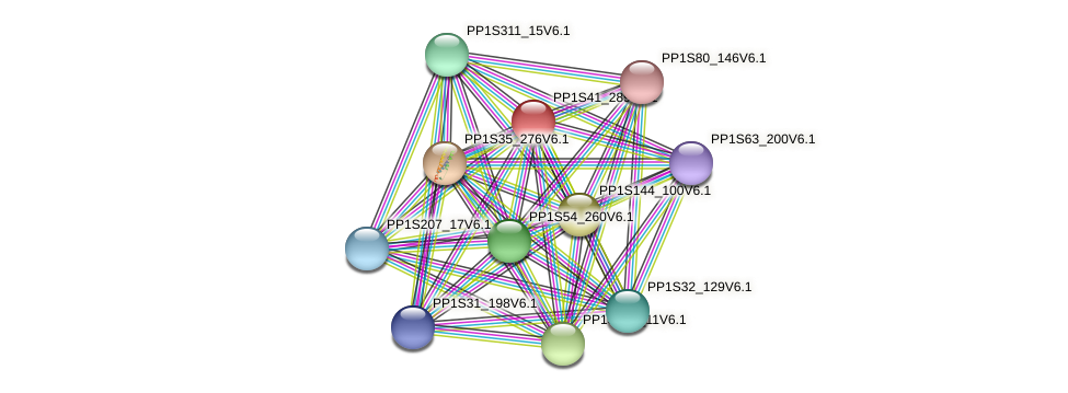 PP1S41_289V6.1 protein (Physcomitrella patens) - STRING interaction network