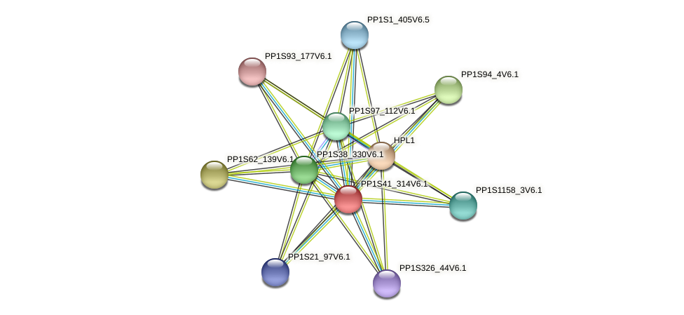 PP1S41_314V6.1 protein (Physcomitrella patens) - STRING interaction network