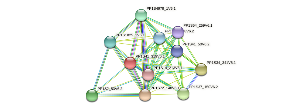 PP1S41_319V6.1 protein (Physcomitrella patens) - STRING interaction network