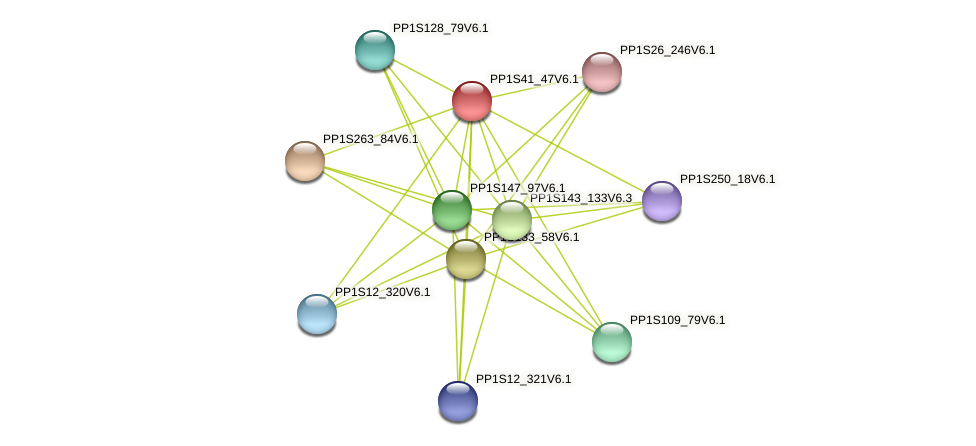 PP1S41_47V6.1 protein (Physcomitrella patens) - STRING interaction network