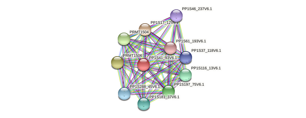 PP1S41_93V6.1 protein (Physcomitrella patens) - STRING interaction network