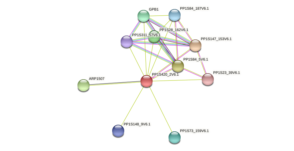 PP1S420_2V6.1 protein (Physcomitrella patens) - STRING interaction network