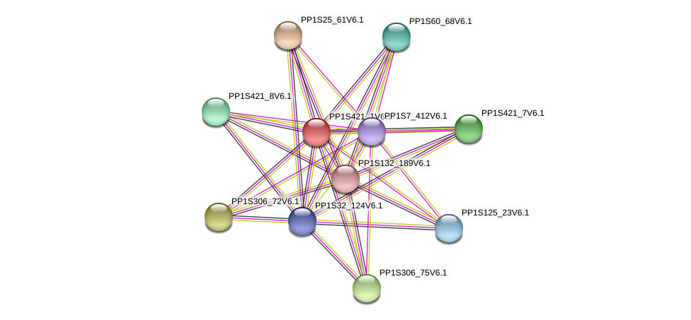 PP1S421_1V6.1 protein (Physcomitrella patens) - STRING interaction network