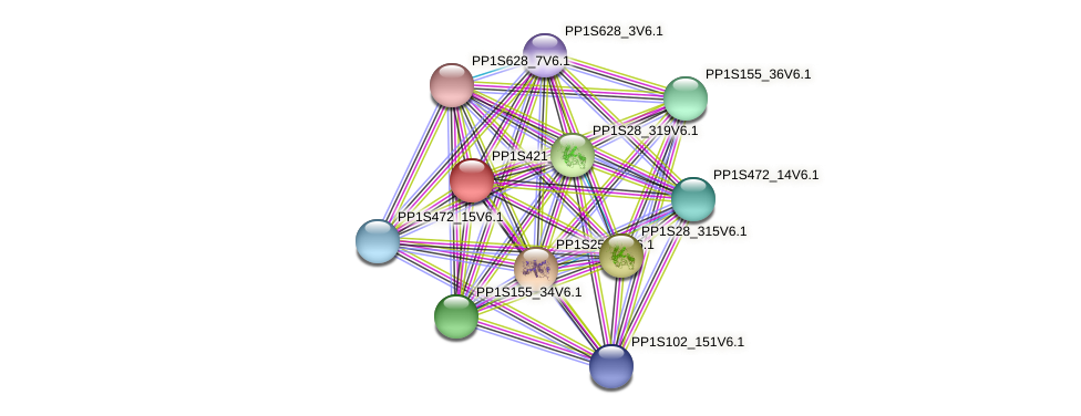 PP1S421_3V6.1 protein (Physcomitrella patens) - STRING interaction network