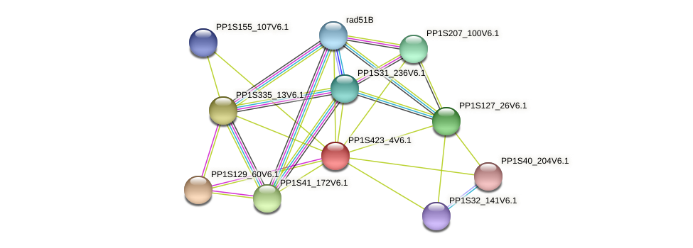 PP1S423_4V6.1 protein (Physcomitrella patens) - STRING interaction network