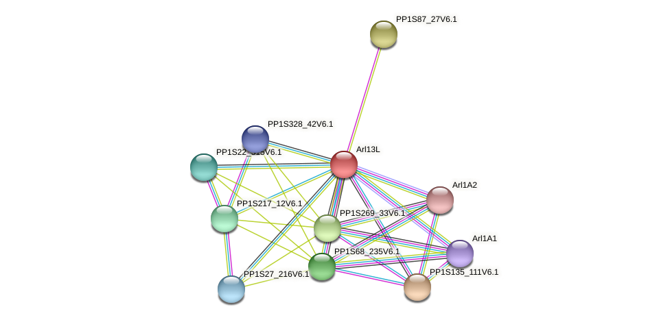 Arl13L protein (Physcomitrella patens) - STRING interaction network