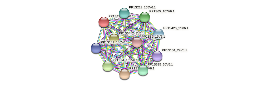 PP1S424_28V6.1 protein (Physcomitrella patens) - STRING interaction network