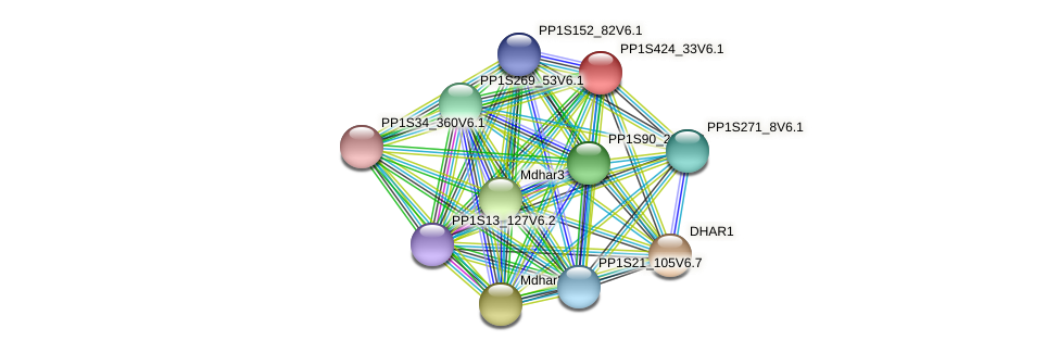PP1S424_33V6.1 protein (Physcomitrella patens) - STRING interaction network