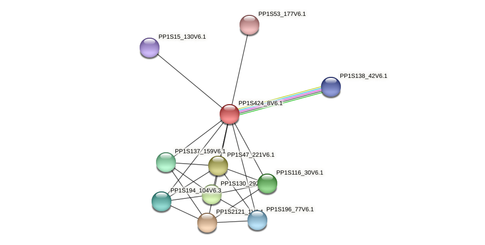 PP1S424_8V6.1 protein (Physcomitrella patens) - STRING interaction network