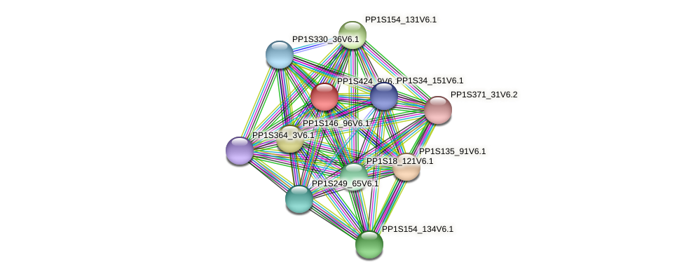 PP1S424_9V6.1 protein (Physcomitrella patens) - STRING interaction network