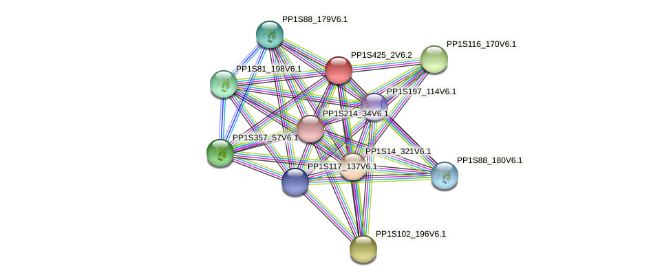 PP1S425_2V6.2 protein (Physcomitrella patens) - STRING interaction network