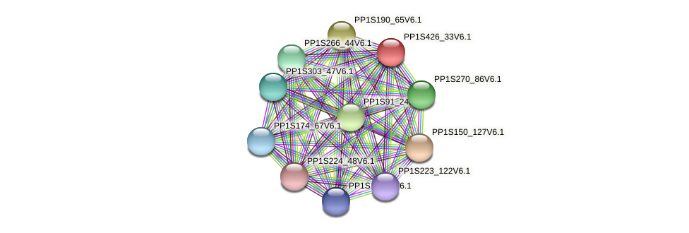 PP1S426_33V6.1 protein (Physcomitrella patens) - STRING interaction network