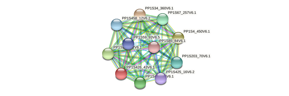 PP1S426_43V6.1 protein (Physcomitrella patens) - STRING interaction network