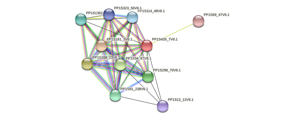 PP1S426_7V6.1 protein (Physcomitrella patens) - STRING interaction network