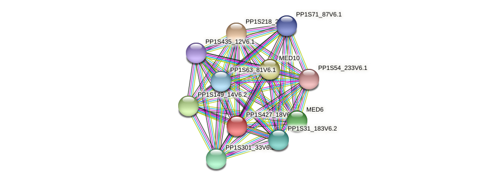 PP1S427_18V6.1 protein (Physcomitrella patens) - STRING interaction network