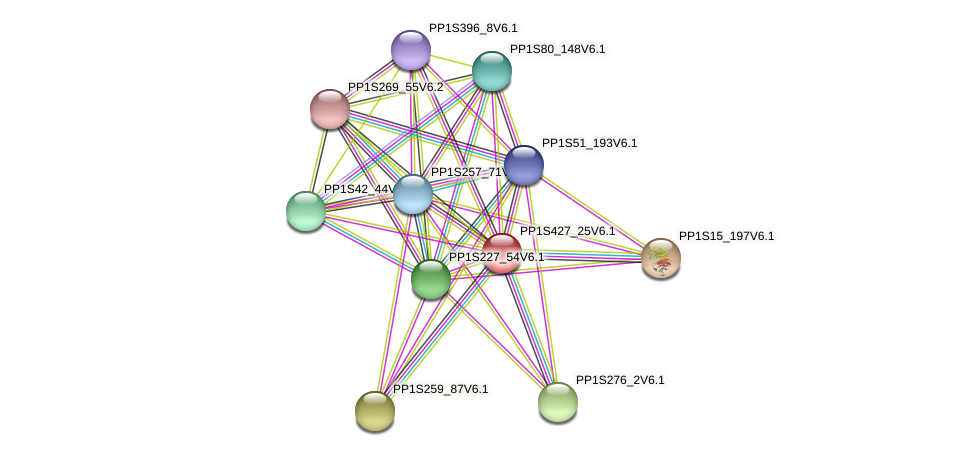 PP1S427_25V6.1 protein (Physcomitrella patens) - STRING interaction network