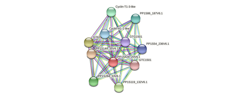 PP1S428_20V6.1 protein (Physcomitrella patens) - STRING interaction network