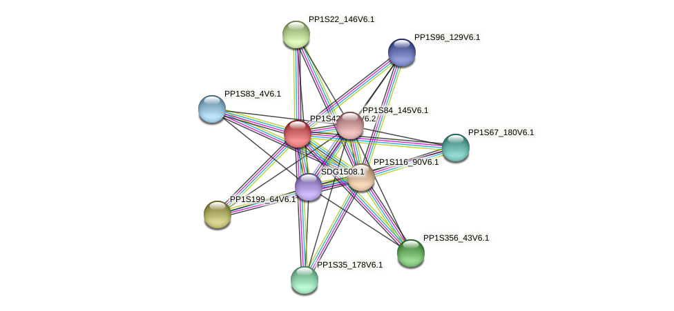 PP1S42_128V6.2 protein (Physcomitrella patens) - STRING interaction network
