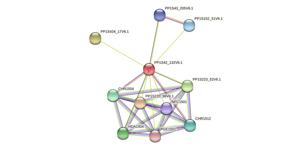 PP1S42_132V6.1 protein (Physcomitrella patens) - STRING interaction network