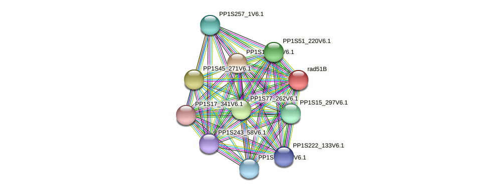 PP1S42_140V6.1 protein (Physcomitrella patens) - STRING interaction network