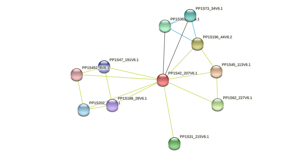 PP1S42_207V6.1 protein (Physcomitrella patens) - STRING interaction network