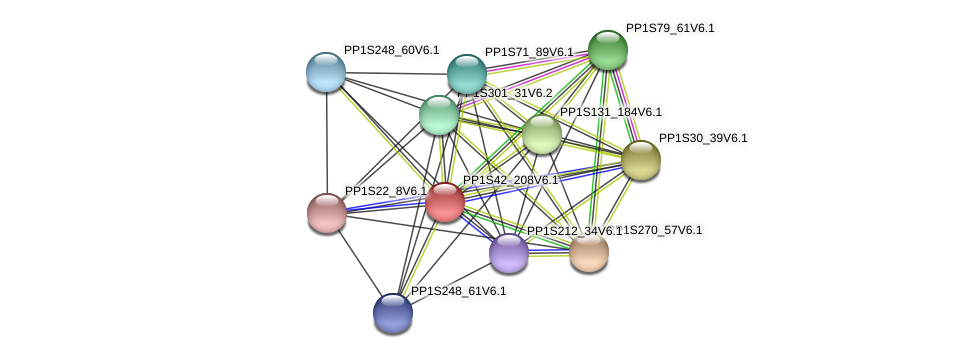 PP1S42_208V6.1 protein (Physcomitrella patens) - STRING interaction network