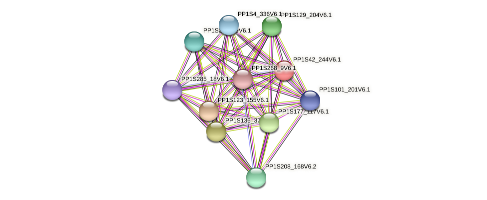 PP1S42_244V6.1 protein (Physcomitrella patens) - STRING interaction network