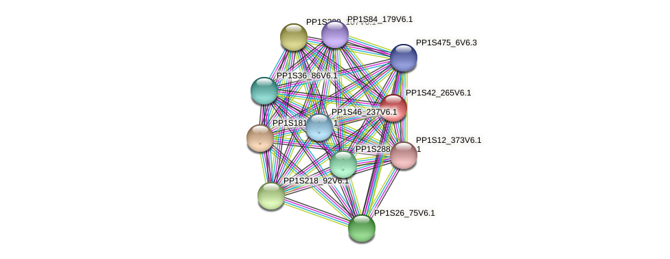 PP1S42_265V6.1 protein (Physcomitrella patens) - STRING interaction network