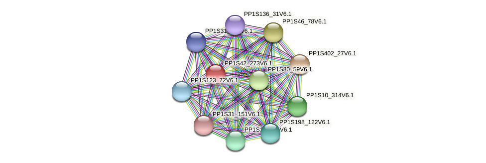 PP1S42_273V6.1 protein (Physcomitrella patens) - STRING interaction network