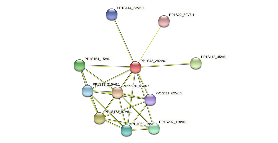 PP1S42_282V6.1 protein (Physcomitrella patens) - STRING interaction network