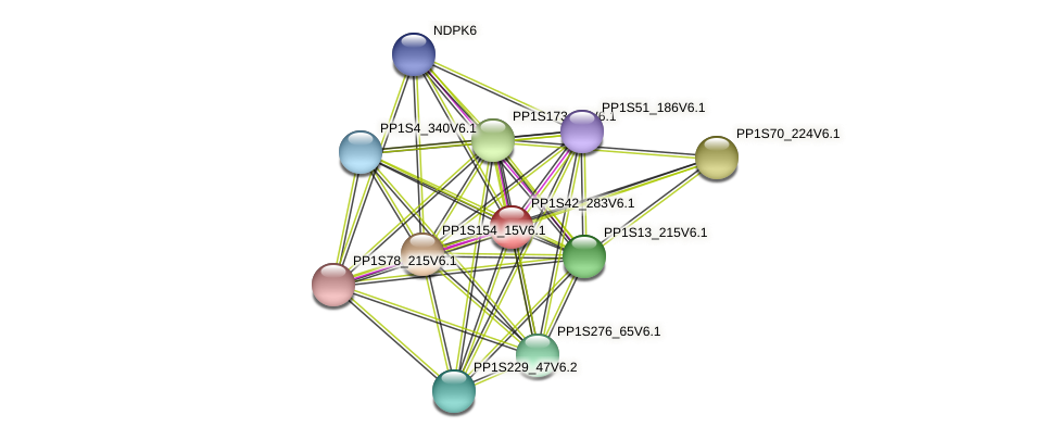 PP1S42_283V6.1 protein (Physcomitrella patens) - STRING interaction network