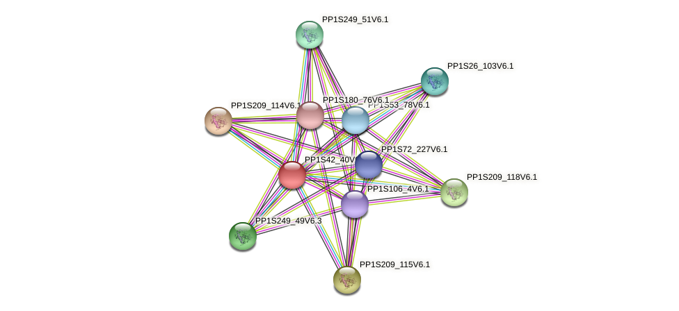 PP1S42_40V6.1 protein (Physcomitrella patens) - STRING interaction network