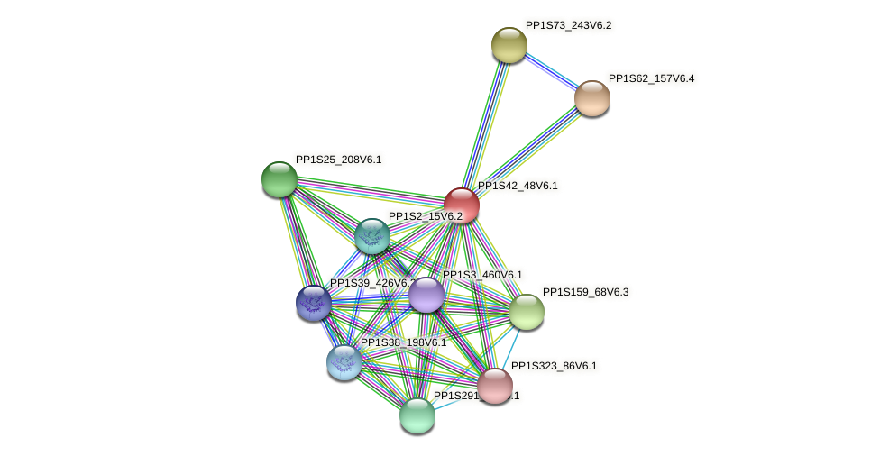 PP1S42_48V6.1 protein (Physcomitrella patens) - STRING interaction network