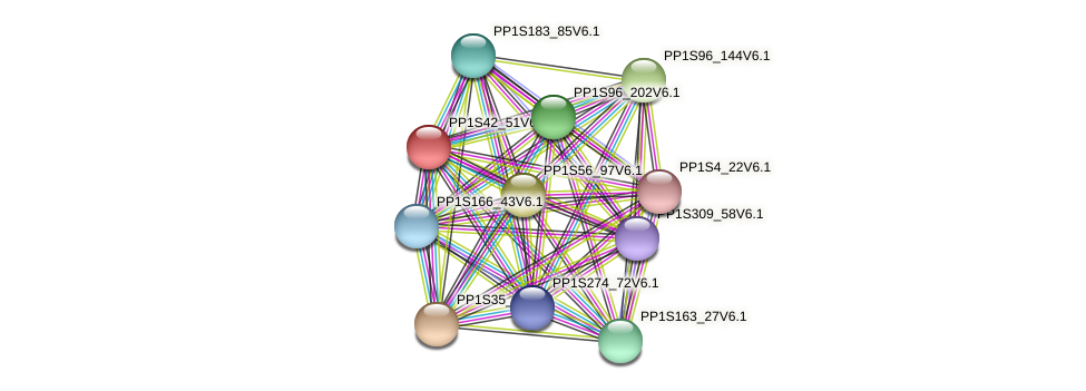PP1S42_51V6.1 protein (Physcomitrella patens) - STRING interaction network